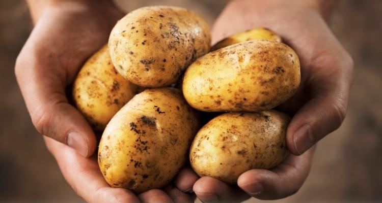potato-juice