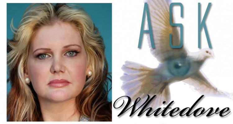 ask-whitedove-header
