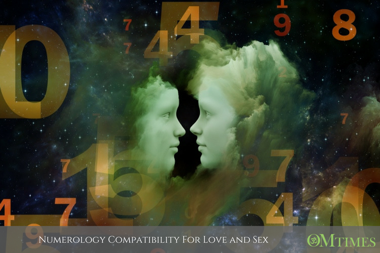 Numerology Compatibility For Love and Sex