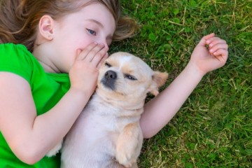 animal-communication_OMTimes