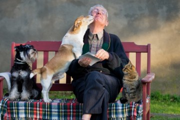 spiritual-lessons_animals_OMTimes