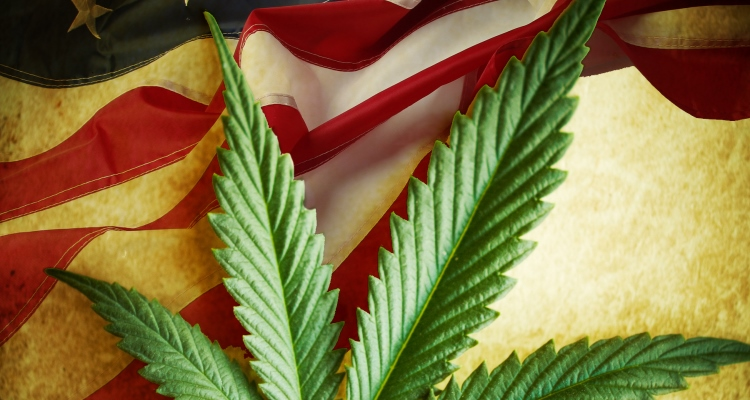 marijuana-revolution_OMTimes
