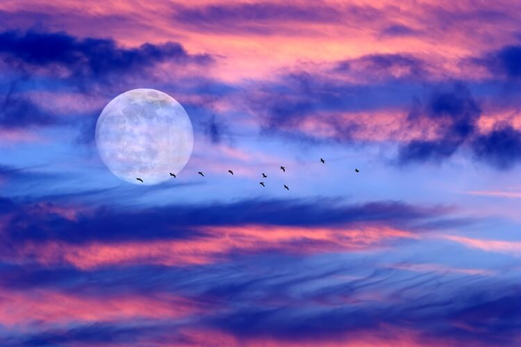 scorpio moon dating a scorpio moon This april 2018 full moon in scorpio promises a complex brew: intense, action-oriented, fated, maybe a bit spooky and, potentially, stabilizing.