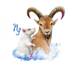 Year of the Rat forecast for Capricorn