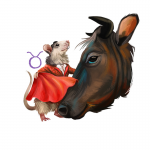 Year of the Rat forecast for Taurus