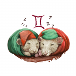 Year of the Rat forecast for Gemini