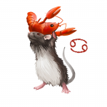 Year of the Rat forecast for Cancer